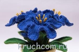 цвеы крючком описание