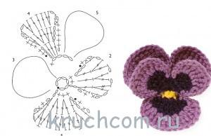 цветы анютины глазки схема